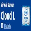 Cloud L Virtual Server