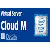 Cloud M Virtual Server plan